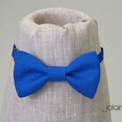 Peteliškė mėlyna